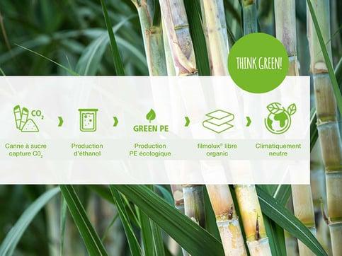 libre-organic-canne-sucre-web
